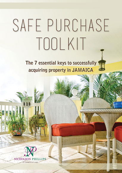 Safe Purchase Toolkit Flyer Design