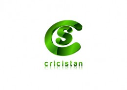 Crisitial logo and branding