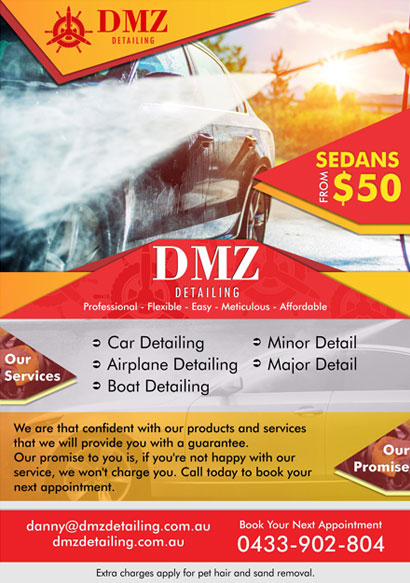 DMZ Flyer design and branding
