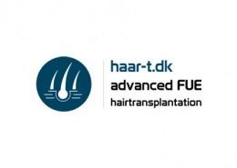 Haar T logo and branding