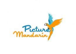 Picture Mandarin logo